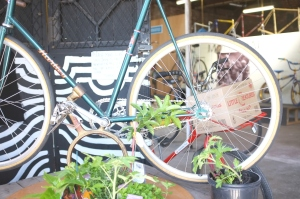 Green, Posty bike with Little creatures beer and a sweet 1940 large fully restored Hartly Track bike
