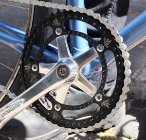 Nicely polished 600 Shimano cranks wearing a bespokechainrings necklace